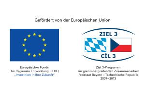 EU Förderhinweis